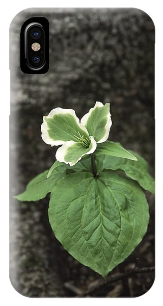Green Trillium Phone Case by Gary Hall