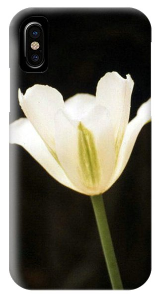 Green Tulip IPhone Case