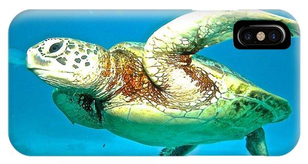Far North Queensland iPhone Case - Green Turtle by Casey Herbert
