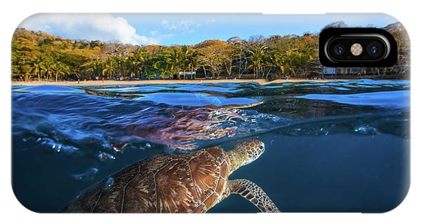 Green Turtle - Sea Turtle Phone Case by Barathieu Gabriel