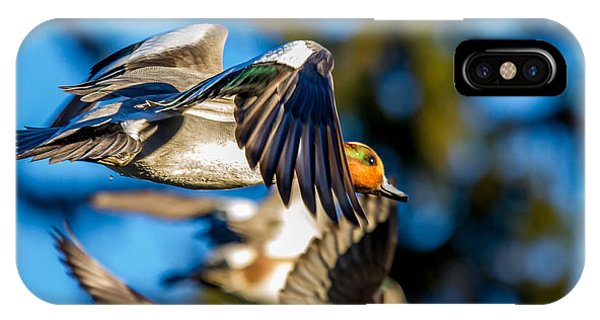 Green-winged Teal Duck In Flight IPhone Case