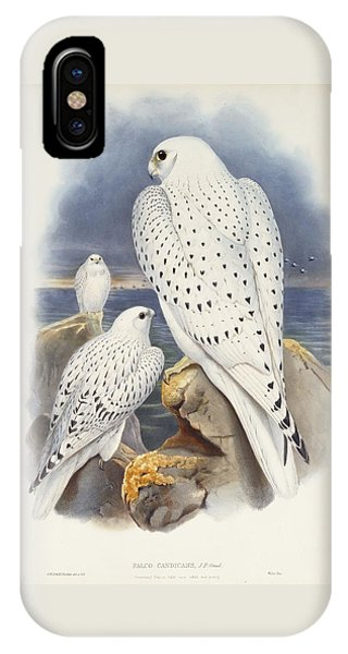 Greenland Falcon IPhone Case