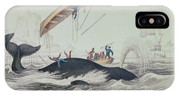 Greenland Whale Book Illustration Engraved By William Home Lizars  IPhone Case
