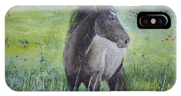Grey Horse IPhone Case