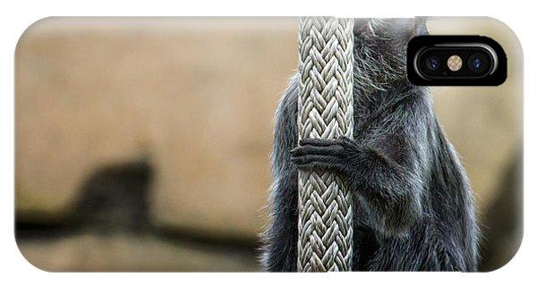Grey Monkey IPhone Case