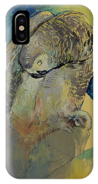 Macaw iPhone Case - Grey Parrot by Michael Creese