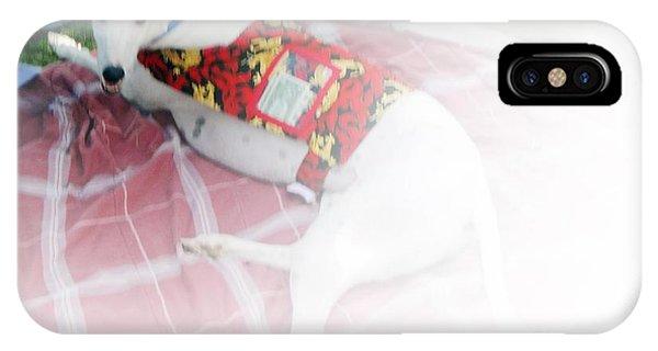 Greyhound Rescue 5 Phone Case by Jackie Bodnar