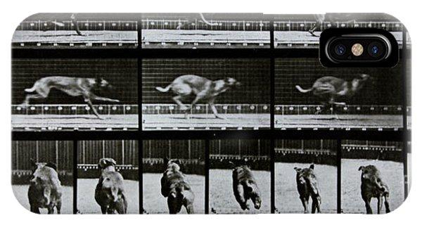Edward iPhone Case - Greyhound Running by Eadweard Muybridge