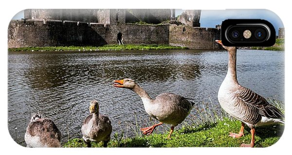 Goslings iPhone Case - Greylag Geese And Caerphilly Castle by Paul Williams