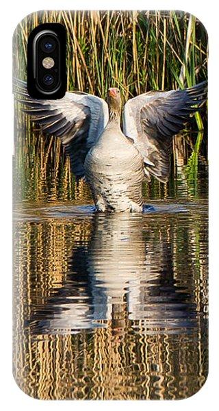 Greylag Goose Family IPhone Case