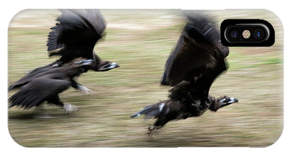 Griffon Vultures Taking Off IPhone Case