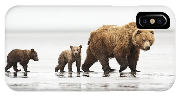 Grizzly Bear Mother And Cubs Lake Clark IPhone Case