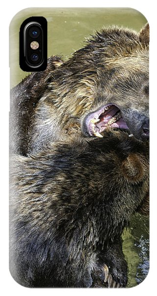 Grizzly Cubs Roughhousing IPhone Case