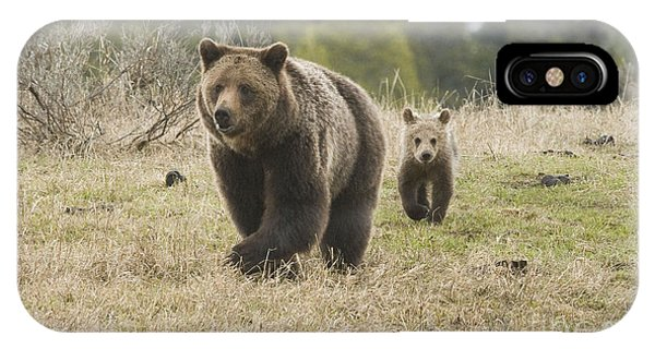 Grizzly Family At Fishing Bridge Phone Case by Bob Dowling