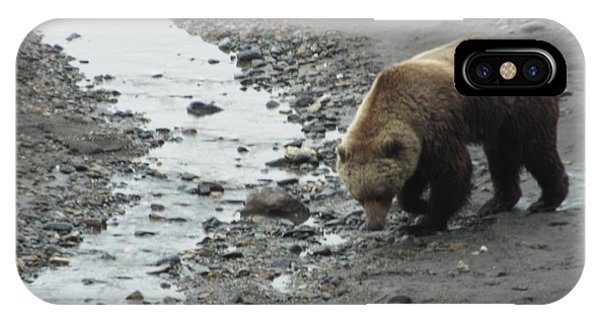 IPhone Case featuring the photograph Grizzly In Denali by Barbara Von Pagel