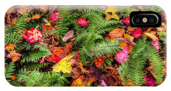 Catoctin Mountain Park iPhone Case - Ground Bouquet - Near Big Hunting Creek Catoctin Mountain Park Maryland Autumn Mid-morning by Michael Mazaika