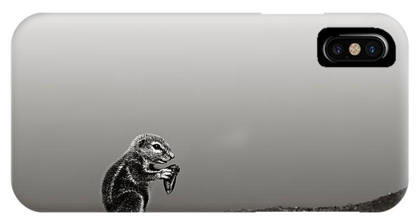 Squirrel iPhone Case - Ground Squirrel by Johan Swanepoel