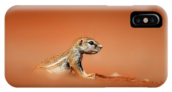 Angle iPhone X Case - Ground Squirrel On Red Desert Sand by Johan Swanepoel
