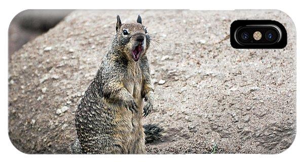 Ground Squirrel Raising A Ruckus IPhone Case