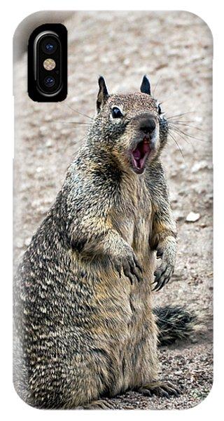 Ground Squirrel Raising A Ruckus IPhone Case