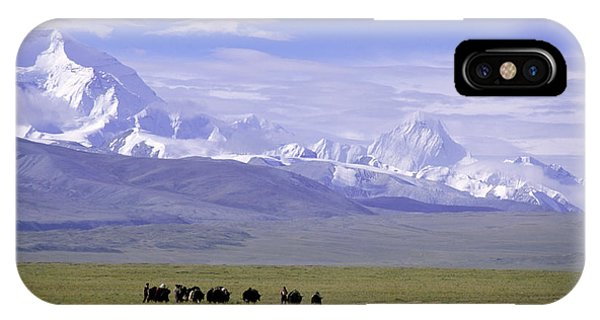 Group Of Yaks Walk Across A Green IPhone Case