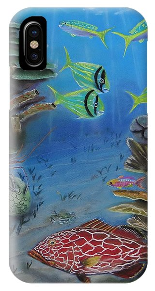 Grouper On The Reef IPhone Case