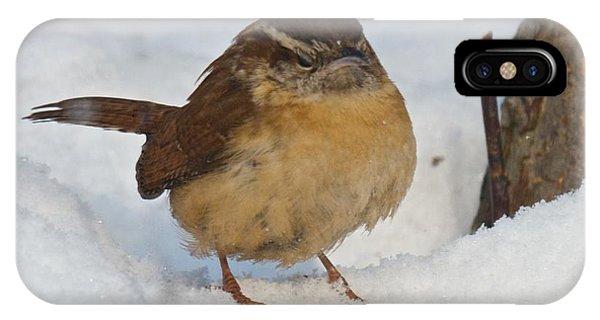 Grumpy Wren IPhone Case