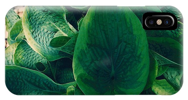 Guacamole Hosta IPhone Case