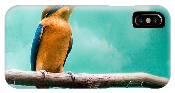 Guam Kingfisher - Exotic Birds IPhone Case