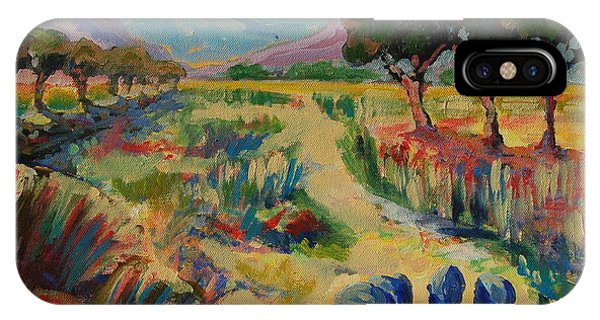 Guinea Fowl In Extensive Landscape IPhone Case