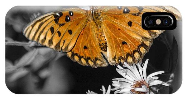 Agraulis Vanillae iPhone Case - Gulf Fritillary Butterfly by Carolyn Marshall