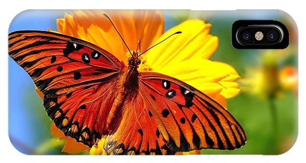 Gulf Fritillary IPhone Case