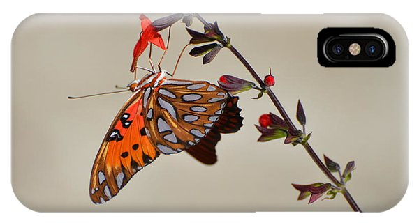 Gulf Fritillary Underwings IPhone Case