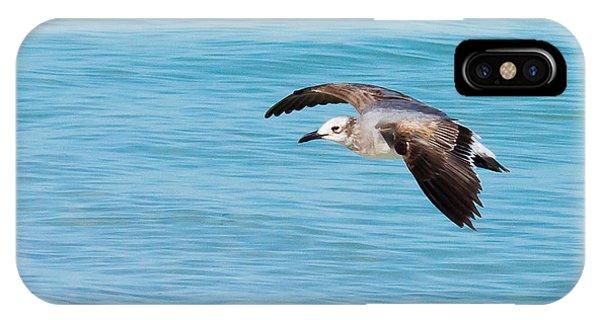 Gull At Lido Beach IIi IPhone Case