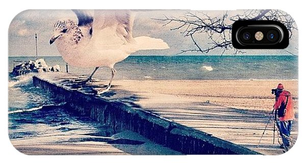 #gull #beautiful #bird #seagull #water IPhone Case