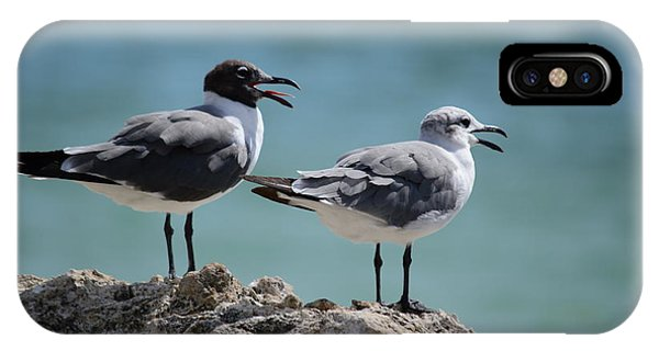 Gull Talk IPhone Case