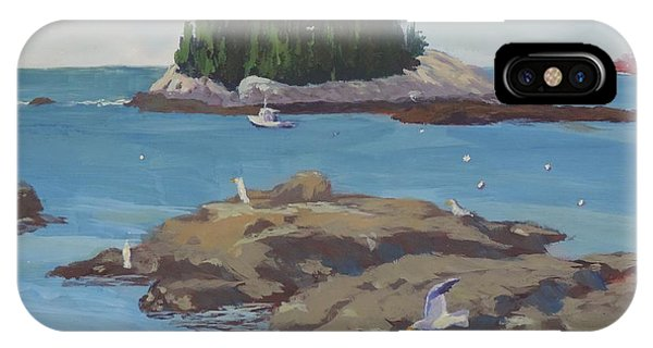 Gulls At Five Islands - Art By Bill Tomsa IPhone Case