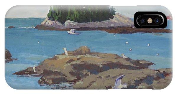 Gulls At Five Islands IPhone Case