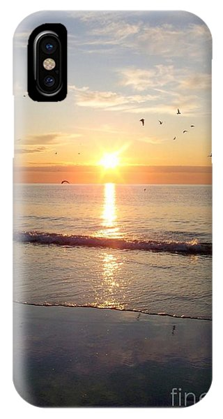 Gulls Dance In The Warmth Of The New Day IPhone Case