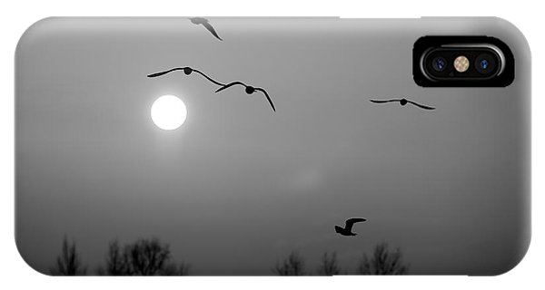 Gulls On The Vistula River IPhone Case