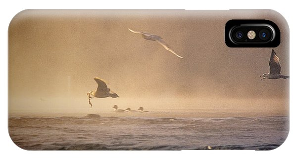 Gulls In The Fog IPhone Case