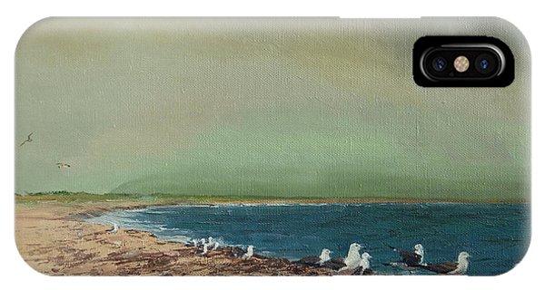 Gulls On The Seashore IPhone Case