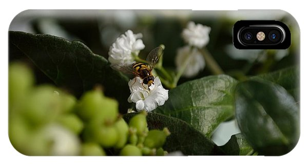 Gypsophilia Hover Fly IPhone Case