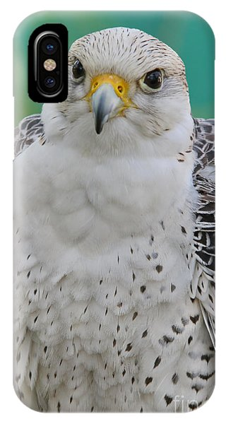 Gyrfalcon IPhone Case