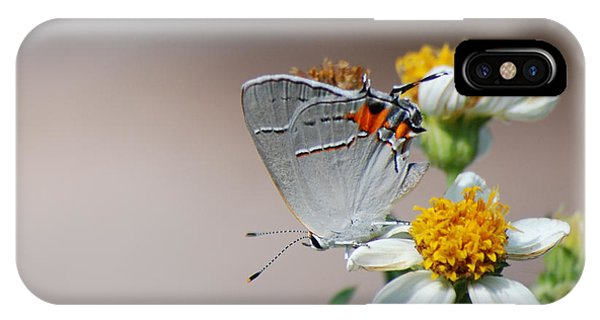 Hairstreak IPhone Case