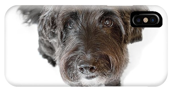Hairy Dog Photographic Caricature Phone Case by Natalie Kinnear