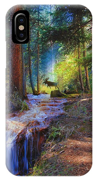 Hall Valley Moose IPhone Case