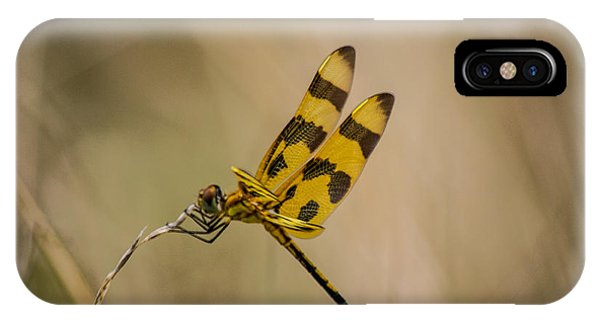 Halloween Pennant Dragonfly IPhone Case