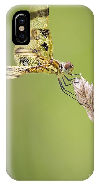 Halloween Pennant Phone Case by Ricky L Jones