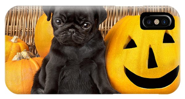 Pug iPhone X Case - Halloween Pug by MGL Meiklejohn Graphics Licensing